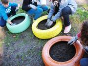 Γεμίζουμε με χώμα και κοπριά τα λάστιχα